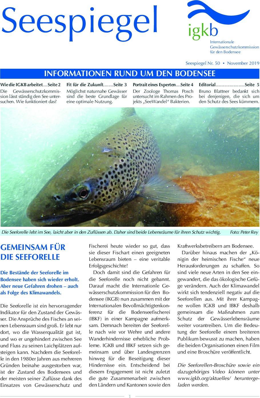 thumbnail of Seespiegel-Nr-50