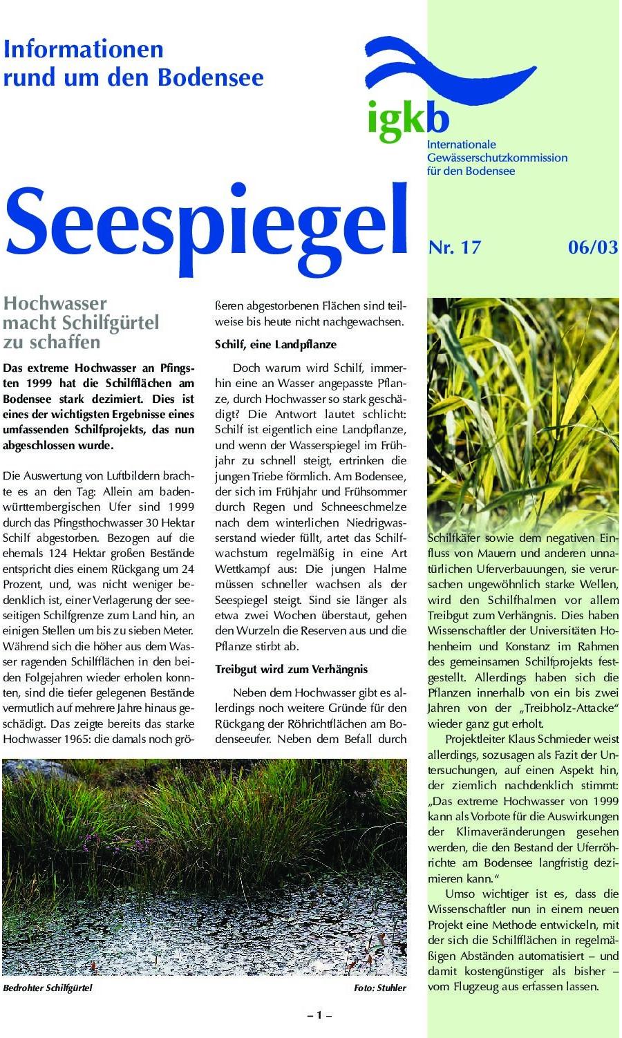 Ausgabe Nr. 17 - Juni 2003