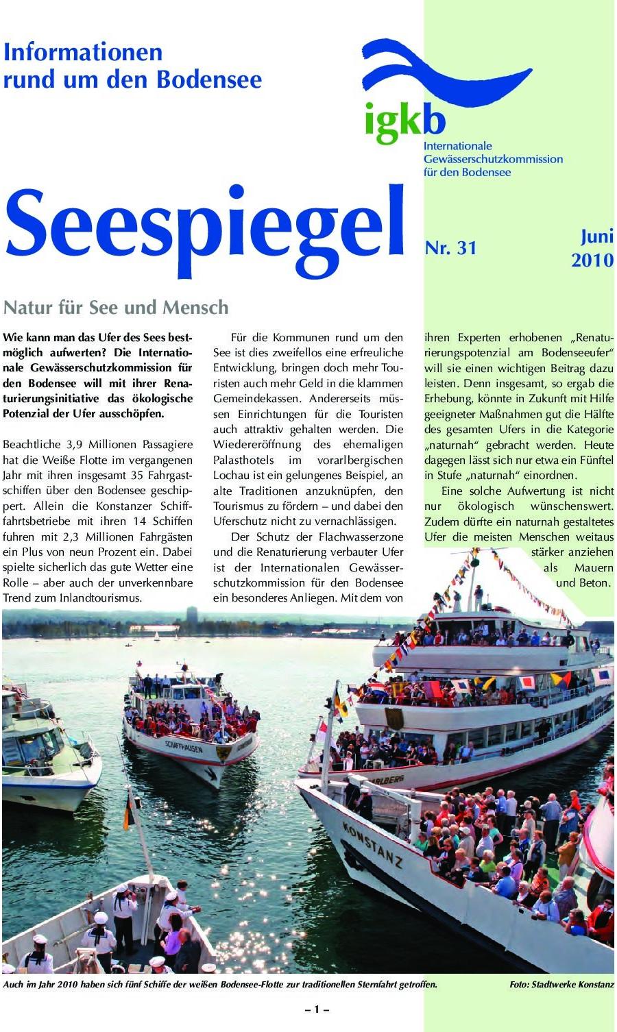 Ausgabe Nr. 31 - Juni 2010