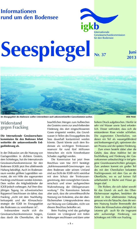 Ausgabe Nr. 37 - Juni 2013